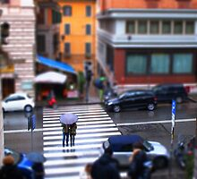 minature zebra crossing, rome by Paul Jarrett