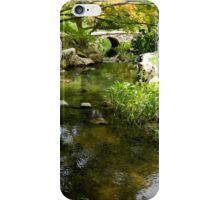 Naturescape - 4 iPhone Case/Skin