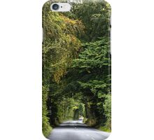 Road to Serenity iPhone Case/Skin