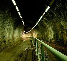 dark, damp, empty tunnel by Paul Jarrett