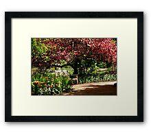 Blossom Time!!! Framed Print