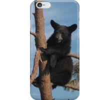 Just Hanging Out ~ Black Bear Cub ~ Baby Bear iPhone Case/Skin