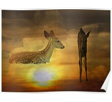 Sky Fawns Poster