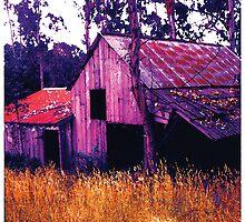Rusty Roof Barn–Bolinas CA by JoeArunski