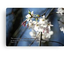 The words of the Lord are pure words Canvas Print