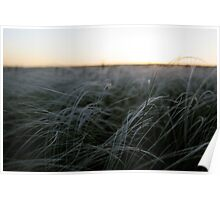 Silver Steppe Poster