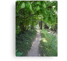 Footpath to the Bus Stop Canvas Print