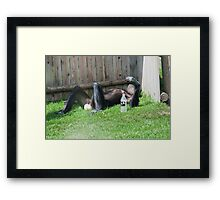 The Morning after the Night before  Framed Print