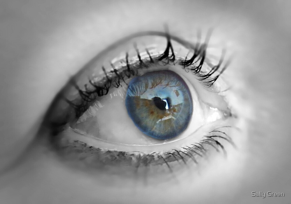....In The Eye Of The Beholder by Sally Green