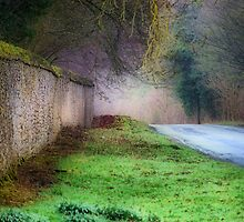 Oxfordshire Country Road by Karen Martin
