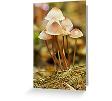 mushrooms bells Greeting Card