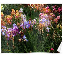 American Giverny Poster