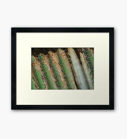 Weathered corrugations Framed Print