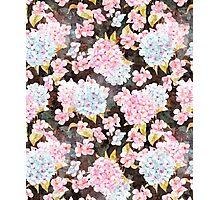 Blossom V2 Photographic Print