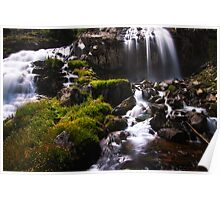 Waterfalls and Wildflowers Poster