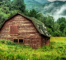 Dilapidated by Peggy  Woods Ryan