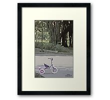 Tricycle in the park Framed Print