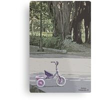 Tricycle in the park Metal Print