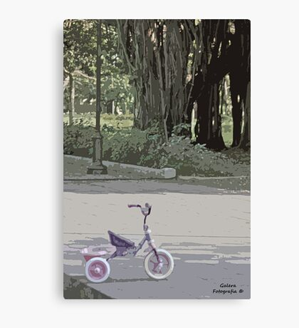 Tricycle in the park Canvas Print