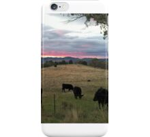 In the bush at sunset. iPhone Case/Skin