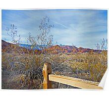 Desert Scene © Poster