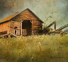 Another Indiana Farm by Kay Kempton Raade