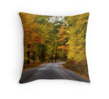 Colorful Quiet Throw Pillow