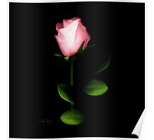 One Pink Rose Poster