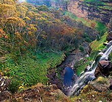 Bryces Gorge and Conglomerate Falls. Cover: The Bogong High Plains by Kevin McGennan