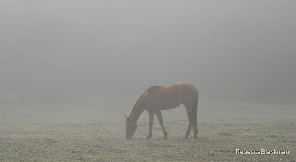Lost In The Mist by RebeccaBlackman