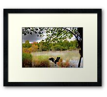 In the calm water. Framed Print