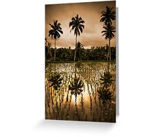 Coconut and Rice Greeting Card