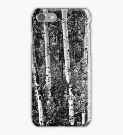 Aspens iPhone Case/Skin