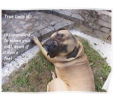 True Love 2 Dog laid down Poster