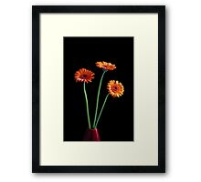 The Power of Three... Framed Print