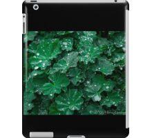 Green Earth iPad Case/Skin