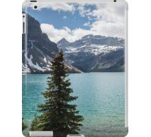 Lake Louise late afternoon iPad Case/Skin