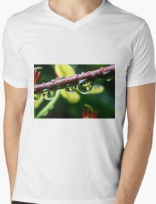 mirrors of nature Mens V-Neck T-Shirt