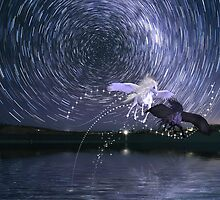Star Trails with a little magic by Jenne