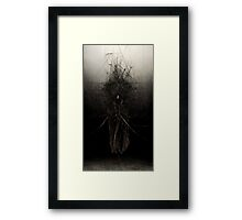 The Nagual Framed Print