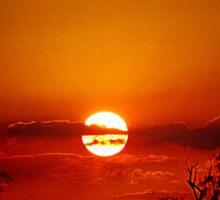 Bushfire Sunset Sticker