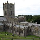 St.Davids by Harry Roberts