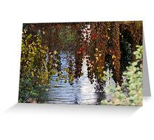 water reflection on river Greeting Card