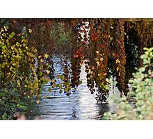 water reflection on river Photographic Print