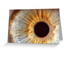Galaxy eye Greeting Card