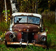 Old Truck by Sally Winter