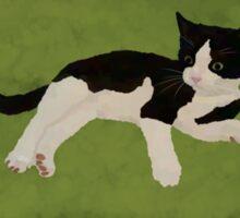 Zorro Kitten - Green Sticker