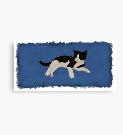 Zorro Kitten - Blue Canvas Print