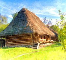 Old rickety shack by Benjamin Gelman