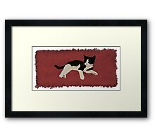 Zorro Kitten - Red Framed Print